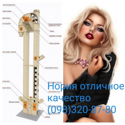 Норія елеватор ковшовий конвеєр норійна стрічка